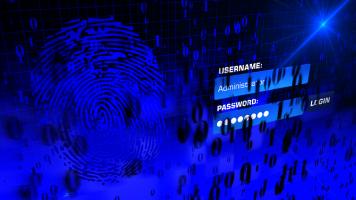 Dicas para evitar a perda de dados por ransomware. Dicas sobre palavras-passe para não perder dados.